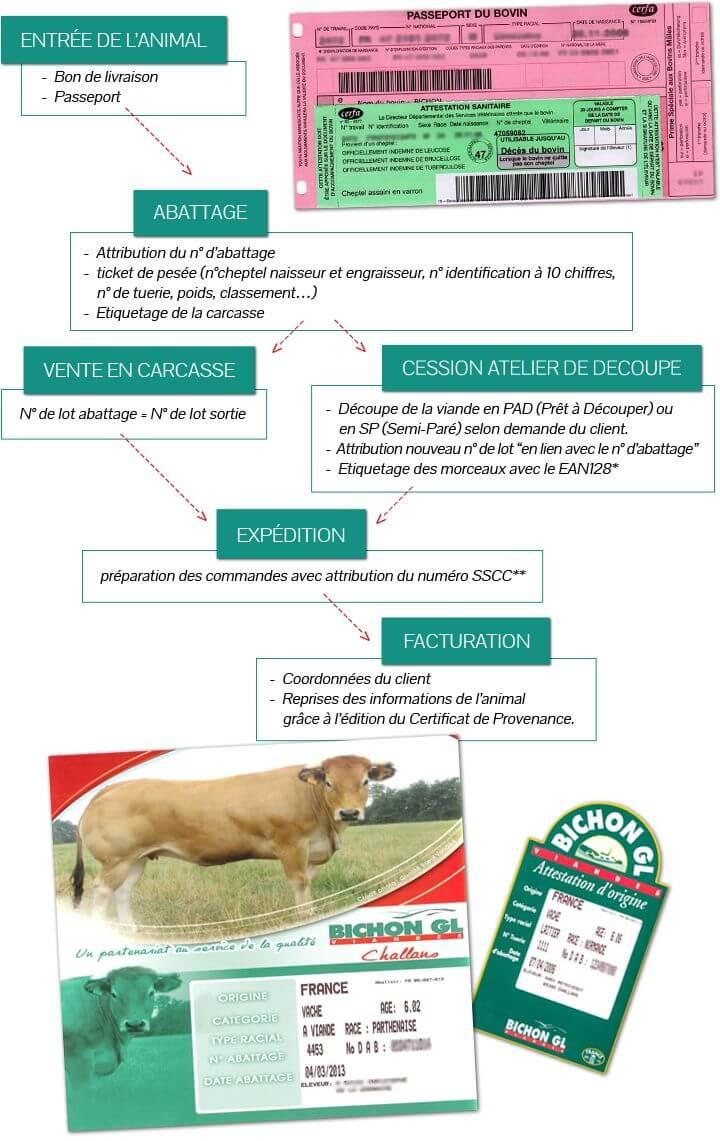 abattoir de boeuf, veau et agneau : tracabilité et label qualité
